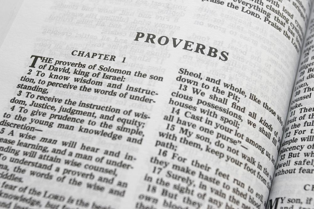 Proverbs 1.13